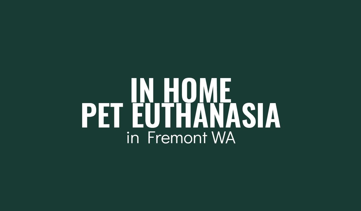 In-Home-Pet-Euthanasia-in-Fremont-WA